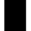 BLACK ROS3 Home Logo